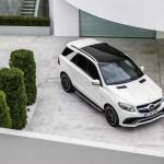Mercedes GLE-21